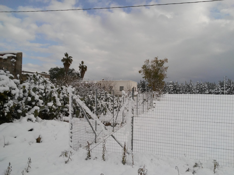 Galleria fotografica neve 03-04 gennaio 2019-20190105_094642.jpg
