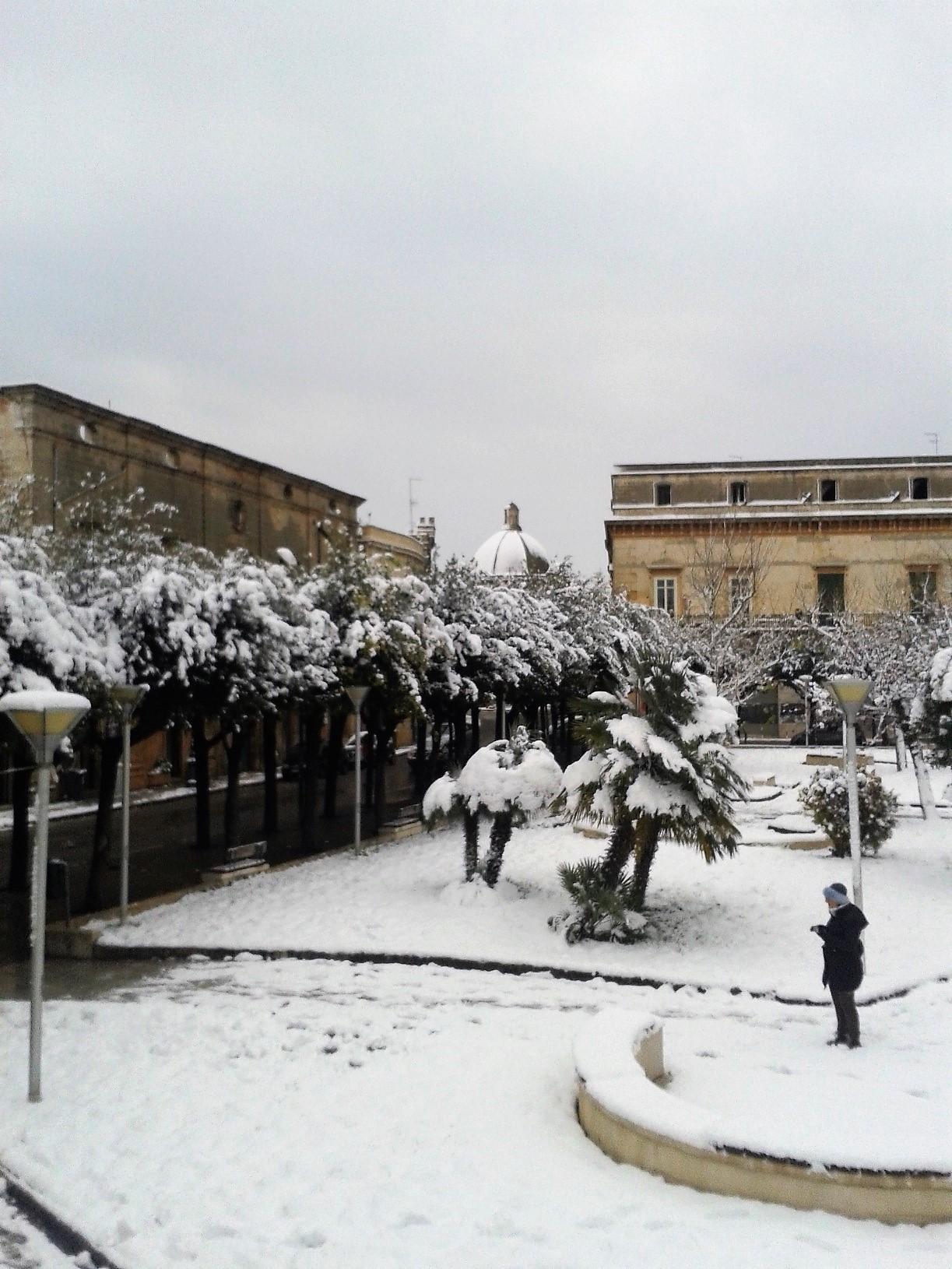 Galleria fotografica neve 03-04 gennaio 2019-wp_000350.jpg