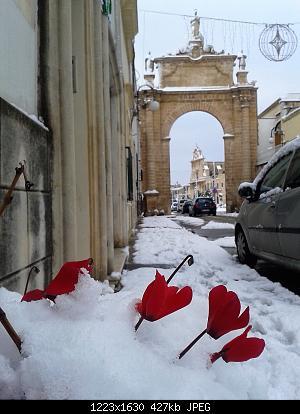 Galleria fotografica neve 03-04 gennaio 2019-wp_000335.jpg