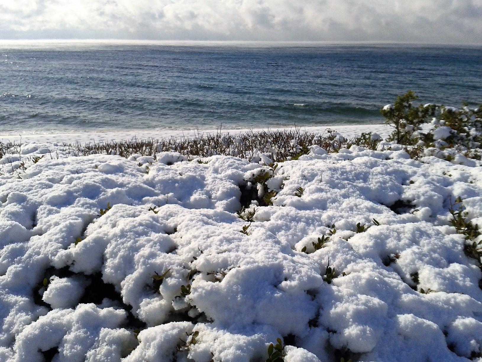Galleria fotografica neve 03-04 gennaio 2019-wp_000261.jpg
