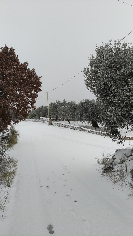 Galleria fotografica neve 03-04 gennaio 2019-p_20190104_105154_vhdr_on.jpg