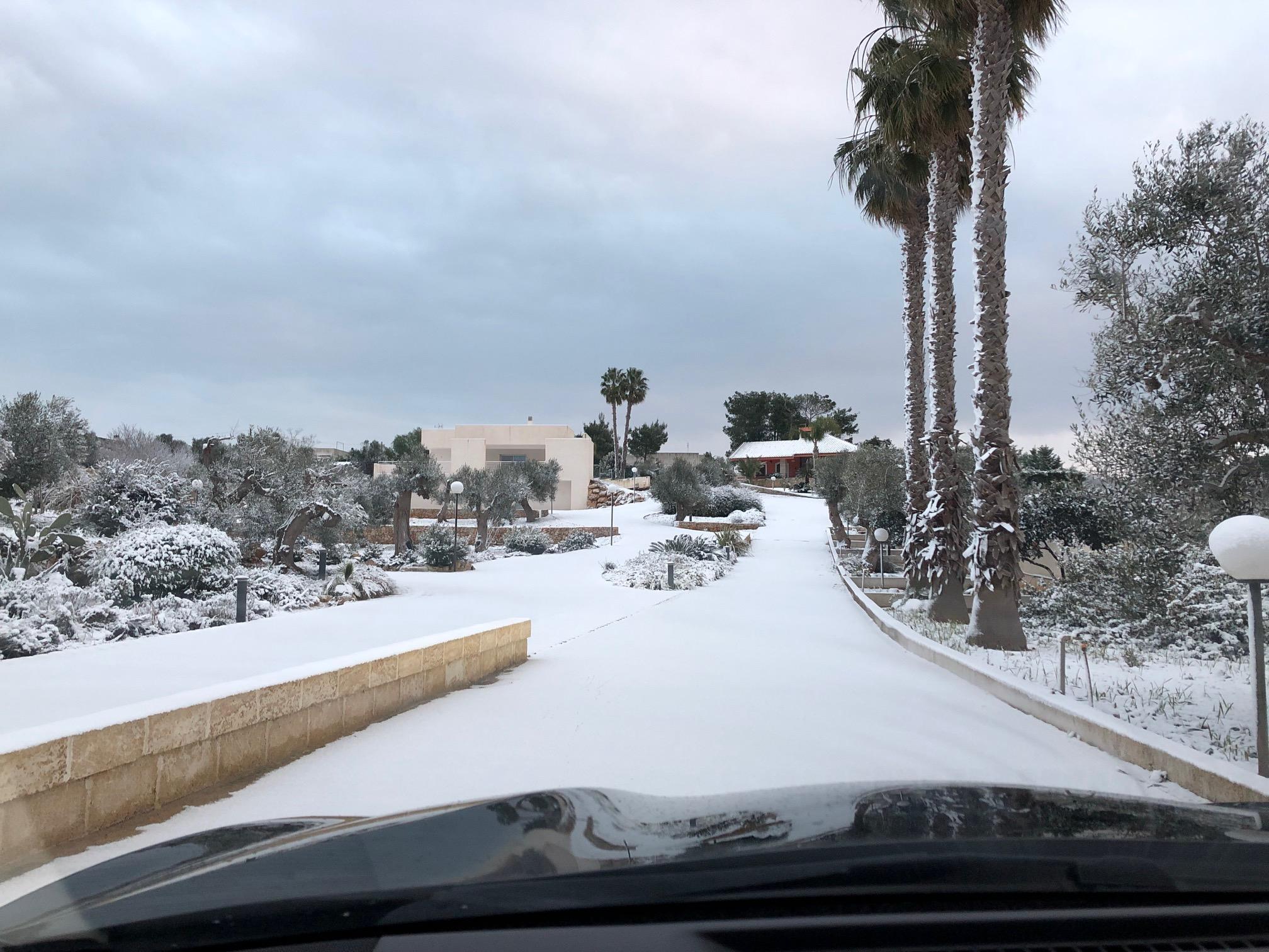 Galleria fotografica neve 03-04 gennaio 2019-img_5975.jpg