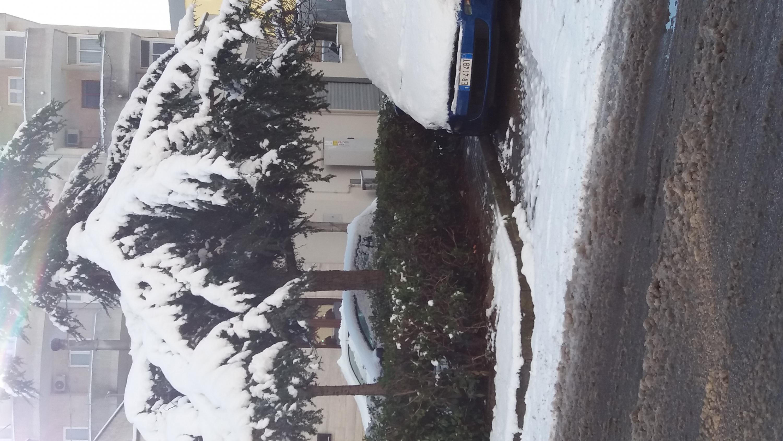 Galleria fotografica neve 03-04 gennaio 2019-20190105_091934.jpg