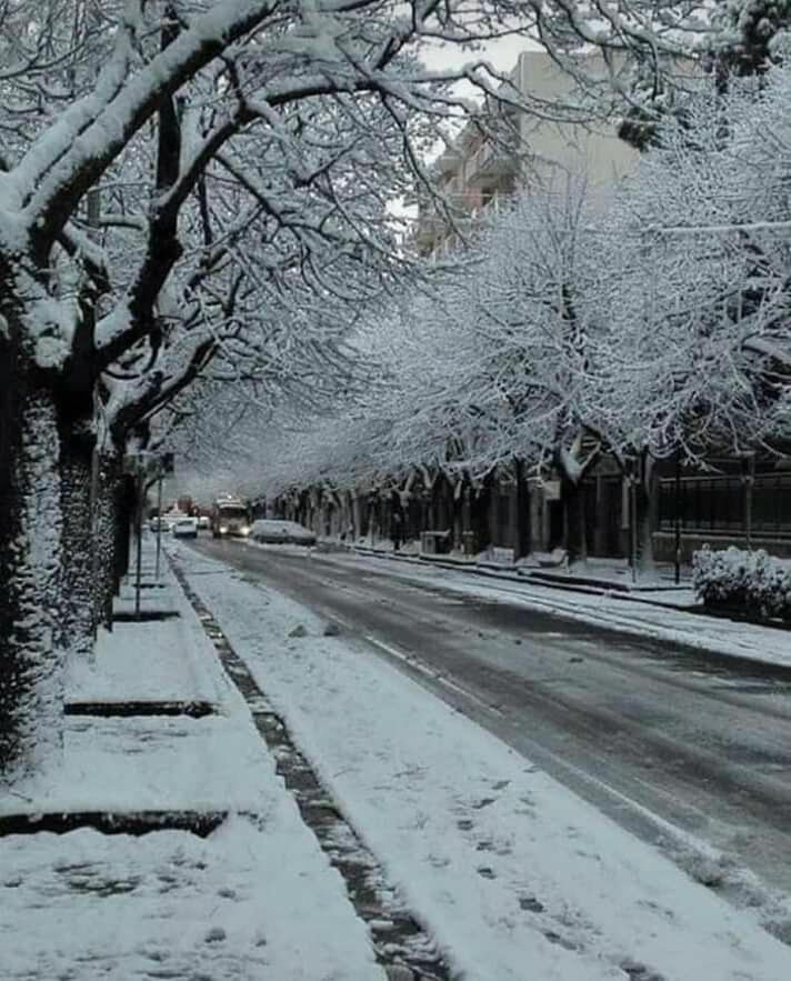 Galleria fotografica neve 03-04 gennaio 2019-img-20190104-wa0068.jpg