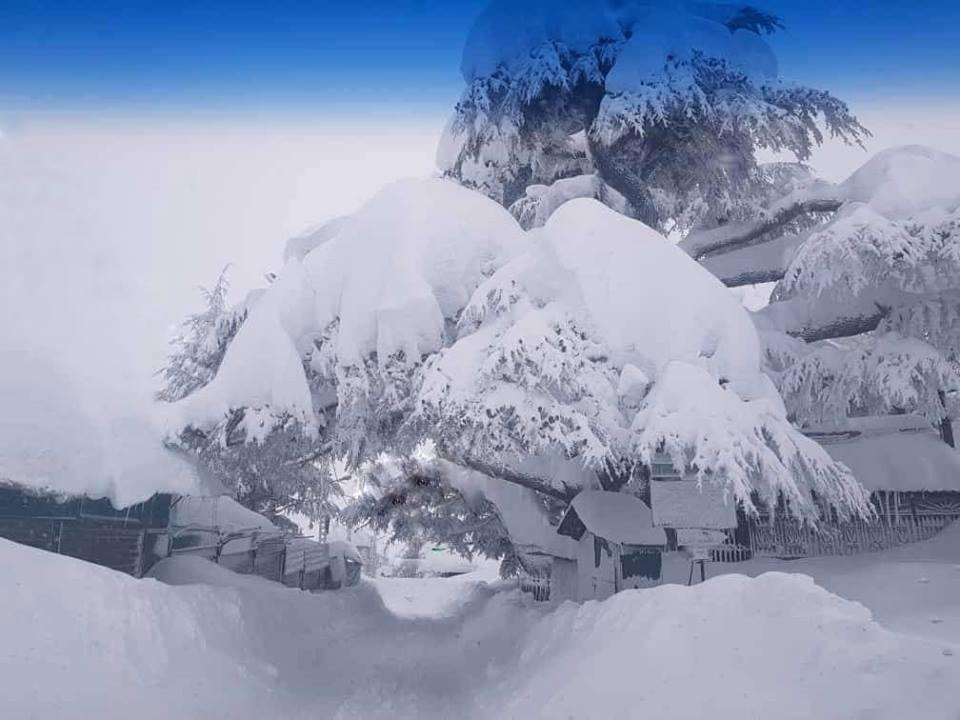 Catena del Libano - Situazione neve attraverso le stagioni-49676578_2292617397417871_7675702463189483520_n.jpg