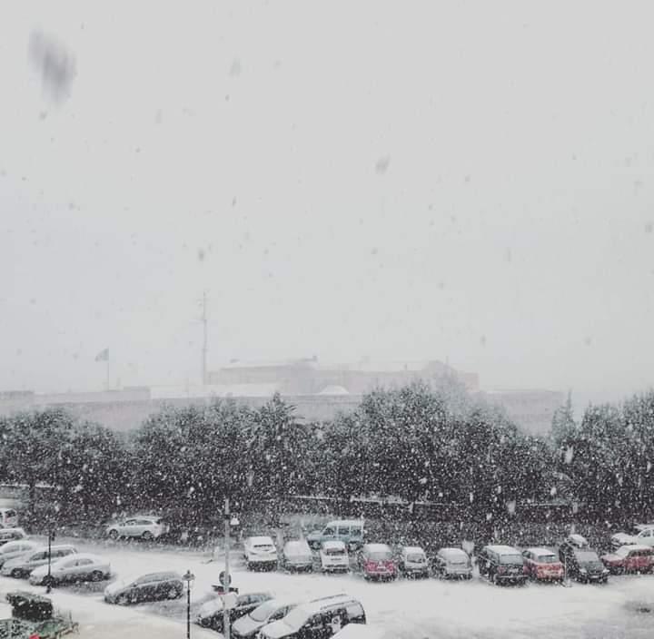 Galleria fotografica neve 03-04 gennaio 2019-img-20190107-wa0010-1-.jpg