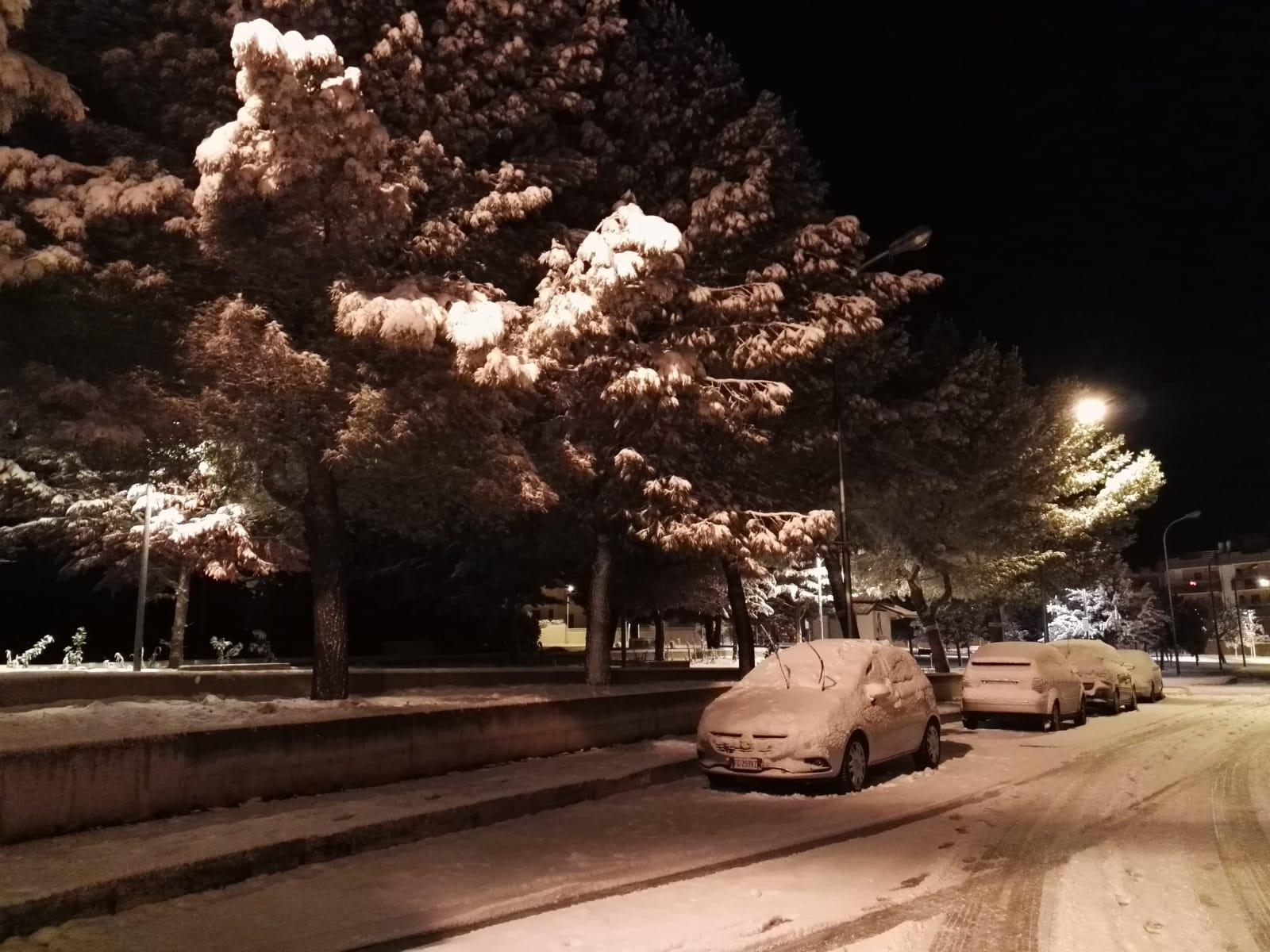 Galleria fotografica neve 03-04 gennaio 2019-neve2019-n3.jpg