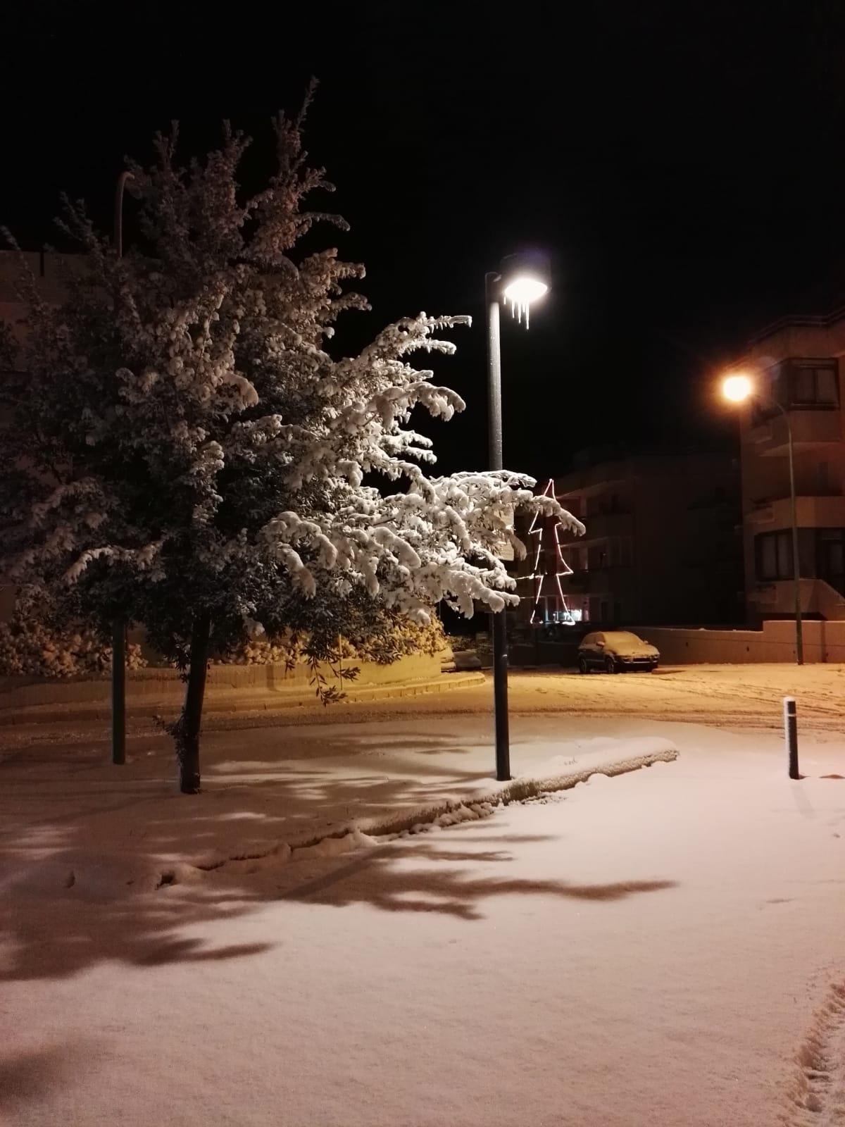 Galleria fotografica neve 03-04 gennaio 2019-neve2019-n4.jpg