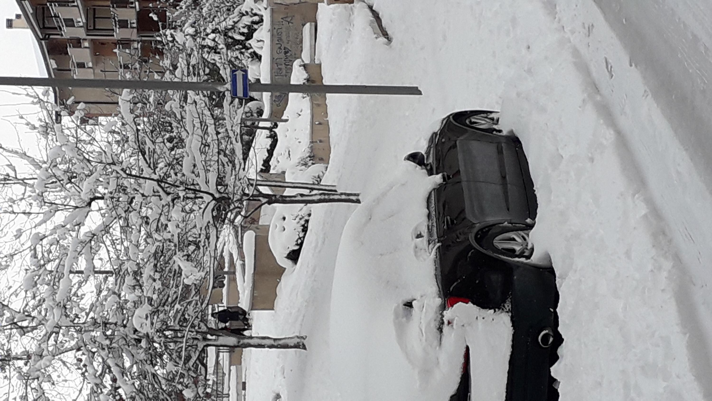 Galleria fotografica neve 03-04 gennaio 2019-20190104_120731.jpg