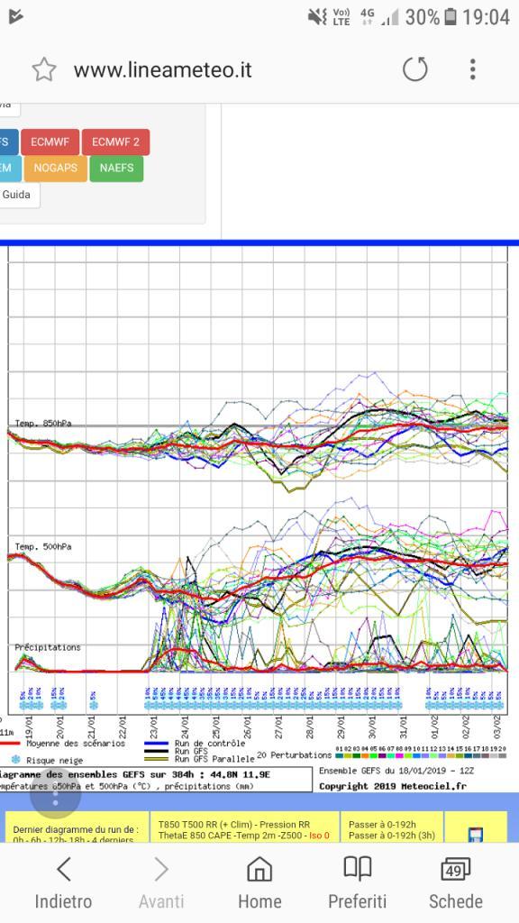 Nowcasting Emilia - Basso Veneto - Bassa Lombardia, 16 Gennaio - 31 Gennaio-screenshot_20190118-190458.jpg
