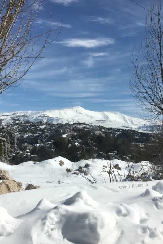 Catena del Libano - Situazione neve attraverso le stagioni-50608244_1589886011113907_8471627913945415680_n.jpg