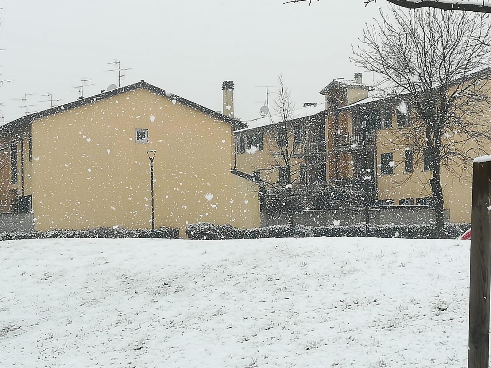 Toscana 25, 26, 27, 28, 29, 30 31 gennaio 2019-aae0dc2c-7b84-4c1b-9e2c-e6c9e58fd43c.jpeg