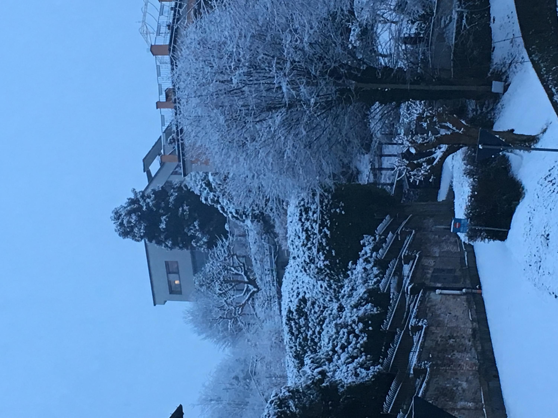 Nowcasting Torino e Provincia Febbraio 2019-733e66ef-f0f1-4bce-b375-f2418096f213.jpg