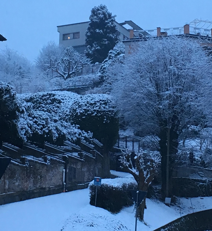 Nowcasting Torino e Provincia Febbraio 2019-5231d504-b1bb-4227-85d1-6121c574747a.jpg