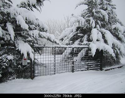la grande nevicata del 30 e 31 gennaio 2019 a Siena !-img_0145.jpg