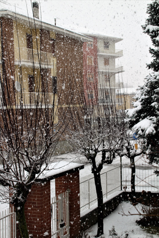 Nowcasting Nazionale Febbraio 2019-img_0467.jpg