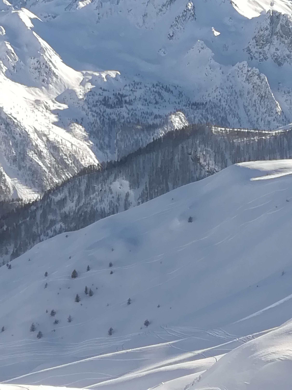 Basso Piemonte Febbraio 2019 - inizio col botto?-img_20190204_152932.jpg