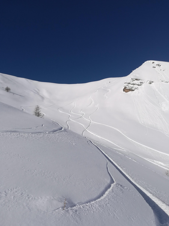 Basso Piemonte Febbraio 2019 - inizio col botto?-img_20190204_105330.jpg