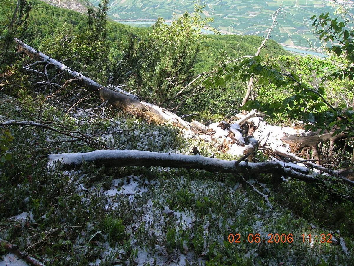 Ondata di freddo che ha portato precipitazioni nevose sotto i 500 m in estate-06-2006-051.jpg