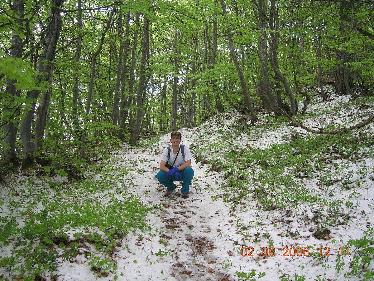Ondata di freddo che ha portato precipitazioni nevose sotto i 500 m in estate-06-2006-065.jpg