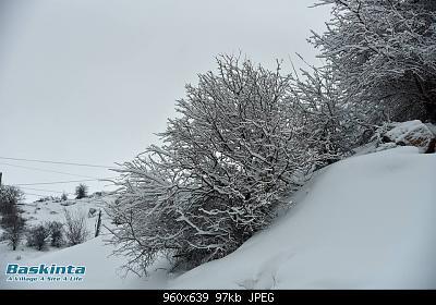 Catena del Libano - Situazione neve attraverso le stagioni-52420908_10156568752437107_4070595545872203776_n.jpg