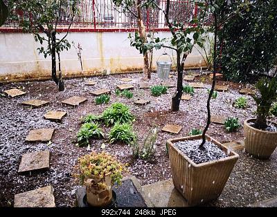 Nowcasting Puglia 24-28 Febbraio 2019-img_20190225_133212.jpeg