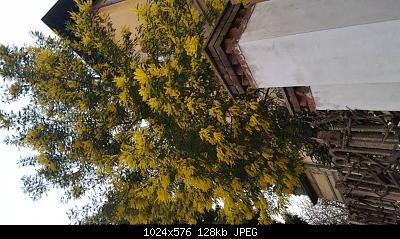 Nowcasting primavera 2019 Varese-Como-Lecco-Cantoni Ticino e Glarona-20190303_180758.jpeg