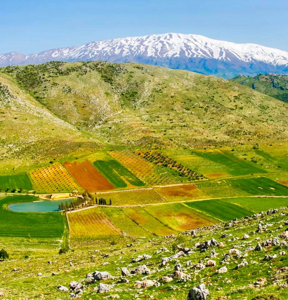 Catena del Libano - Situazione neve attraverso le stagioni-57486088_2398349530177235_4409829208419729408_n.jpg