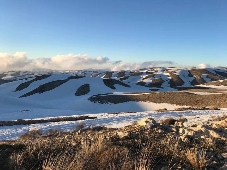 Catena del Libano - Situazione neve attraverso le stagioni-57186039_1704859936283180_1768998313694068736_n.jpg