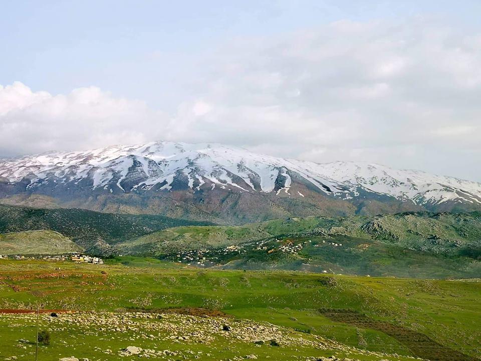 Catena del Libano - Situazione neve attraverso le stagioni-58578359_1070504636470014_1286576883948847104_n.jpg