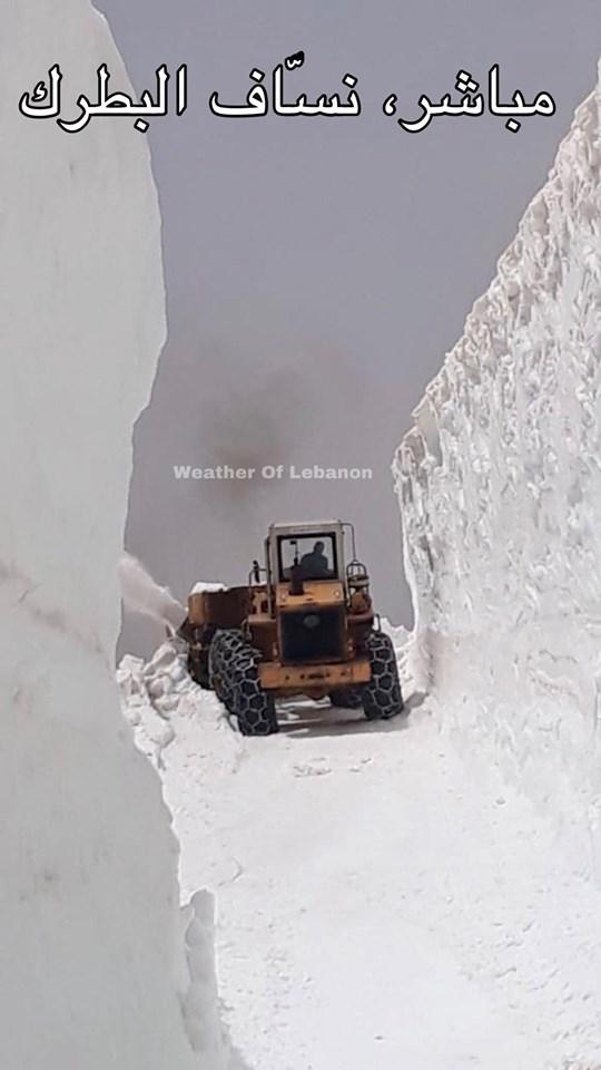 Catena del Libano - Situazione neve attraverso le stagioni-61505213_2460366617308859_7087554172865740800_n.jpg
