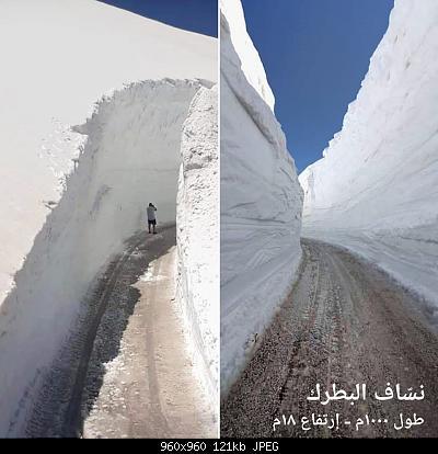Catena del Libano - Situazione neve attraverso le stagioni-60786542_2500351226644486_2464608635678883840_n.jpg