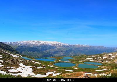 Catena del Libano - Situazione neve attraverso le stagioni-60667064_2736953136320810_355789365609234432_n.jpg