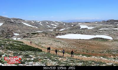 Catena del Libano - Situazione neve attraverso le stagioni-64239284_10157025978456343_4678655201500987392_n.jpg