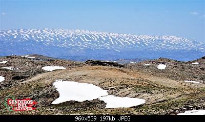 Catena del Libano - Situazione neve attraverso le stagioni-62370795_10157025978706343_1039915649419182080_n.jpg
