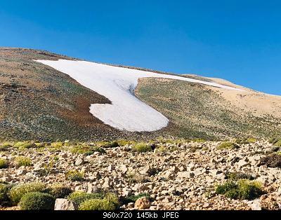 Catena del Libano - Situazione neve attraverso le stagioni-66596962_2557784504233736_812536095039291392_n.jpg