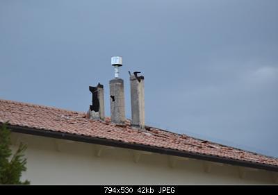 Nowcasting Marche Luglio 2019-323e327785174530b6a4d4a6b008639c.jpg