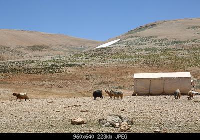Catena del Libano - Situazione neve attraverso le stagioni-66651093_2295858070666403_2062835103930777600_n.jpg