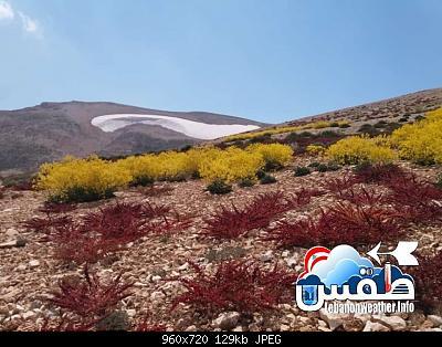 Catena del Libano - Situazione neve attraverso le stagioni-67376302_2483571665036743_8052462418938298368_n.jpg