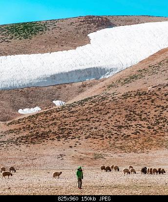 Catena del Libano - Situazione neve attraverso le stagioni-67980716_2595445367134316_1358977671643529216_n.jpg