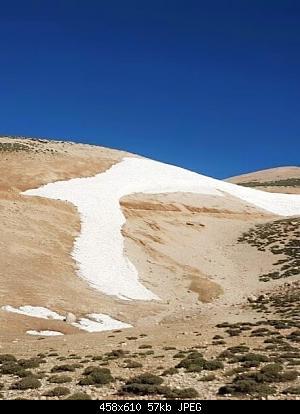 Catena del Libano - Situazione neve attraverso le stagioni-67615999_2635051303174477_309030237046308864_n.jpg