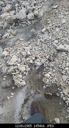 Conca Prevala (sella Nevea-ud) 15-08-09... e altre foto di confronto-ghiaccio-sommita.jpg
