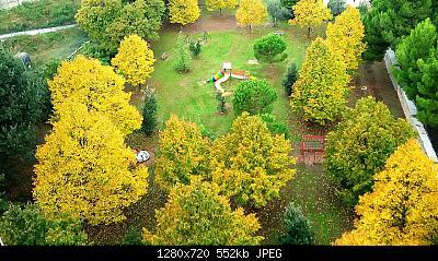 Nowcasting vegetazione 2019-img_20161016_090421_1571083974851.jpg