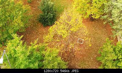 Nowcasting vegetazione 2019-img_20171008_102038_1571084230229.jpg