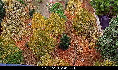 Nowcasting vegetazione 2019-20181015_084504_1571084435207.jpg
