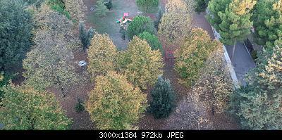 Nowcasting vegetazione 2019-20191021_073457.jpg