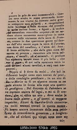 Alberi tipici delle regioni italiane-20191105_224204.jpg