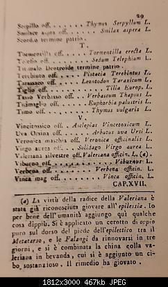 Alberi tipici delle regioni italiane-20191105_225407.jpg