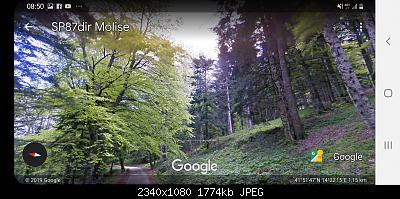 Alberi tipici delle regioni italiane-screenshot_20191110-085051_earth.jpg