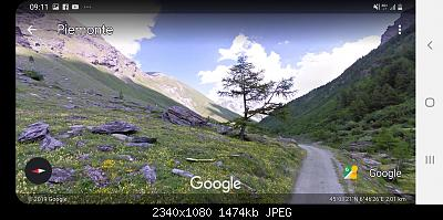 Alberi tipici delle regioni italiane-screenshot_20191110-091112_earth.jpg